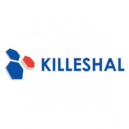 Killeshal Precast Concrete